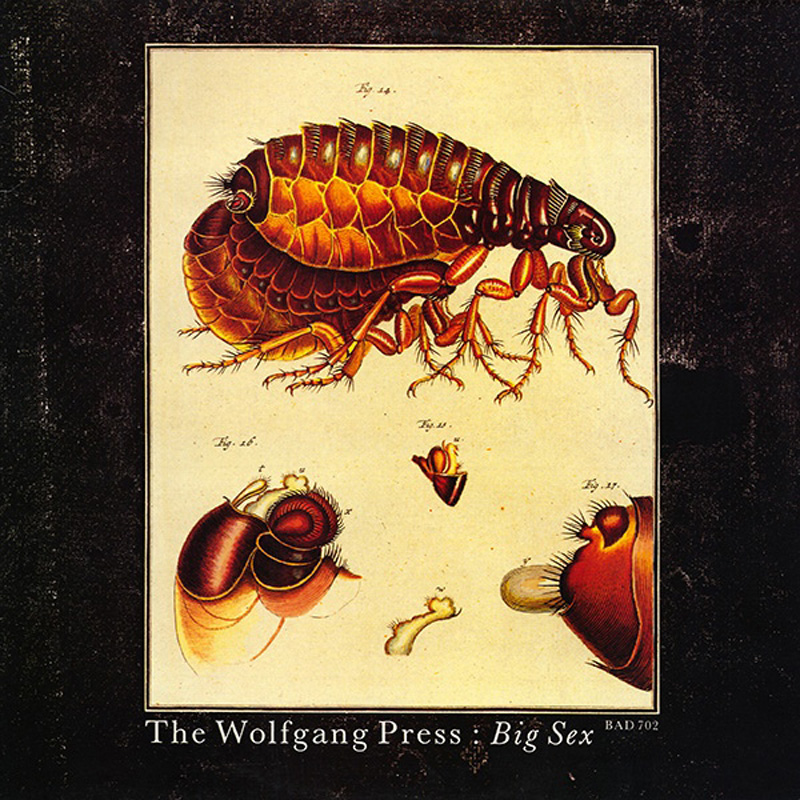 The Wolfgang Press Big Sex